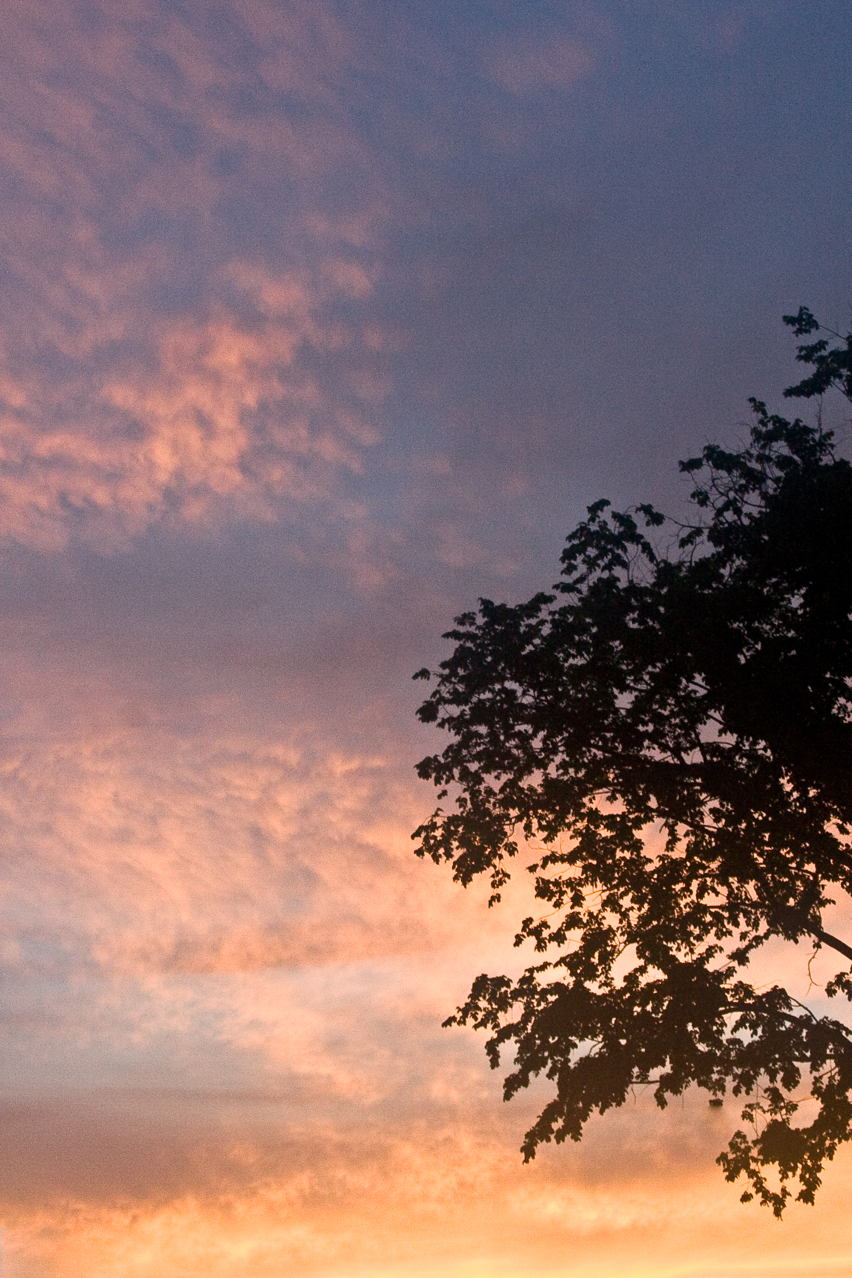 Sunset Glory #3