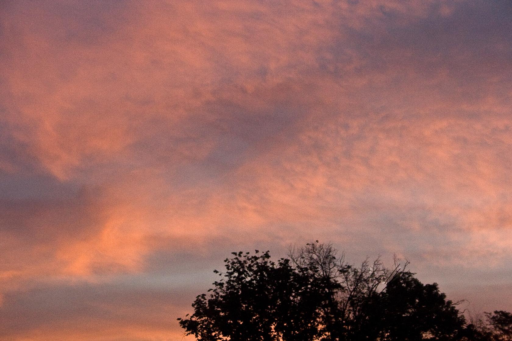 Sunset Glory #5
